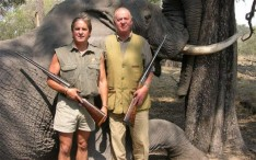 Juan Carlos elefant