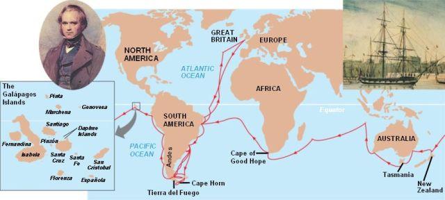 Voyage Beagle