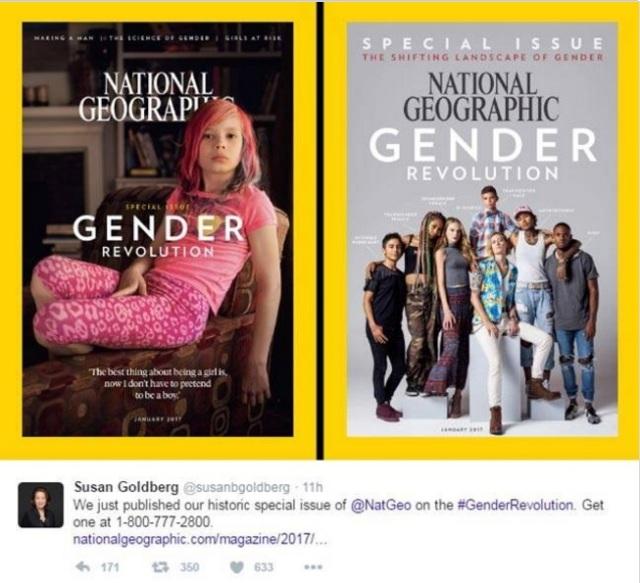 susan-goldbergs-tweet